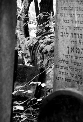Zdjęcia: Warszawa, Cmentarz Żydowski, na cmentarzu, POLSKA