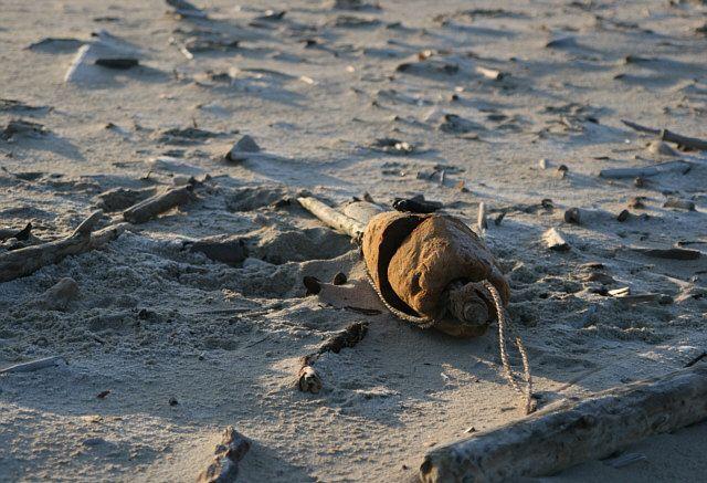 Zdjęcia: Sobieszewo, Pomorze, wyrzucone na brzeg..., POLSKA