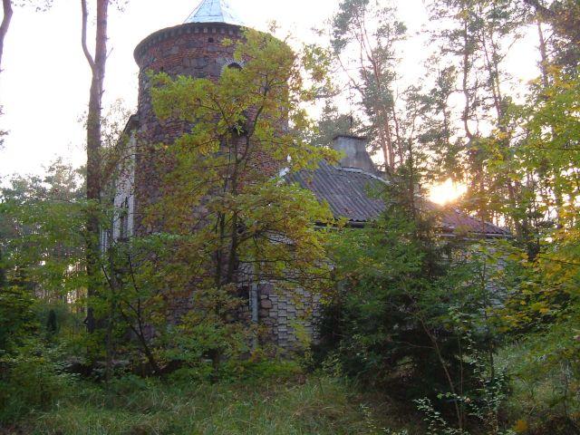 Zdjęcia: mazowiecki park krajobrazowy, chatka w lesie, POLSKA