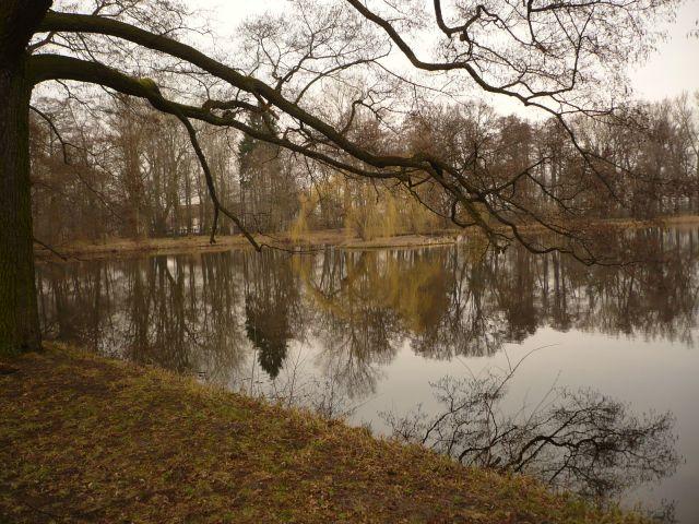Zdjęcia: Park, Mazowsze, ach to Mazowsze..., POLSKA