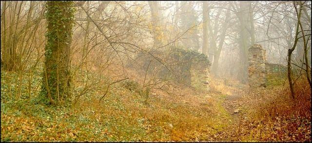 Zdjęcia:  brama do zamku Templariuszy wejście od strony parku., woj.Opolskie, brama, POLSKA