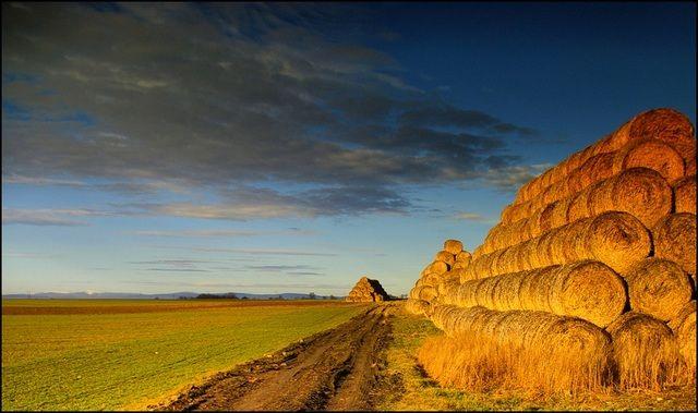 Zdj�cia:  okolice G�og�wka,po lewej  na horyzoncie G�ry Opawskie, woj.Opolskie, wiejskie klimaty 2, POLSKA