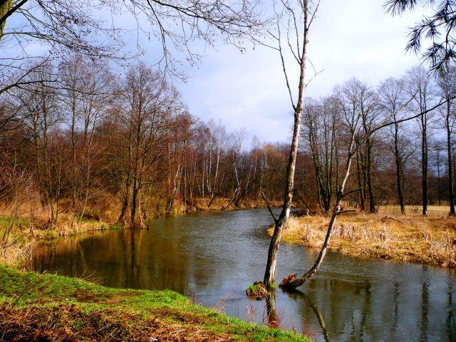 Zdj�cia: mazowsze, mazowsze, u progu wiosny..., POLSKA