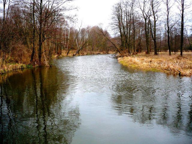 Zdjęcia: mazowsze, mazowsze, u produ wiosny... 1, POLSKA