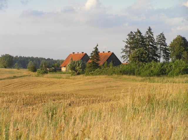 Zdjęcia: pola pod Nidzicą, mazury, brama Mazur, POLSKA