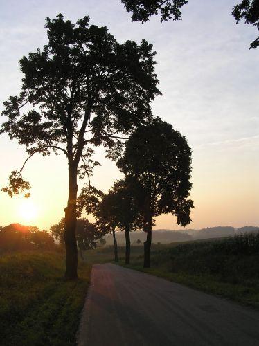 Zdjęcia: droga, Mazury, z Nidzicy do Leszcza, POLSKA