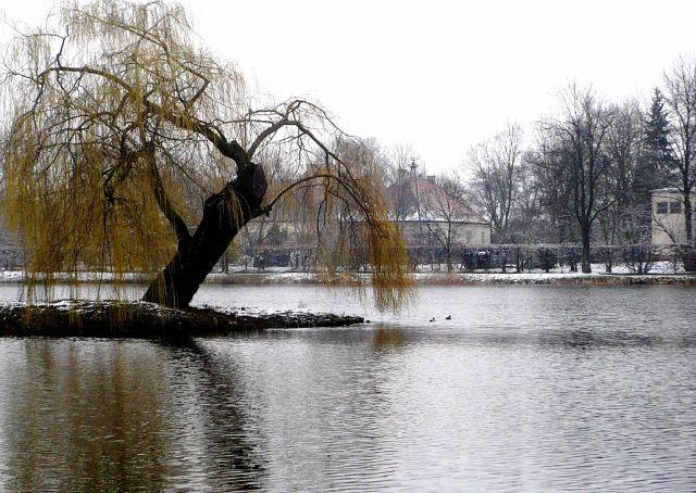 Zdjęcia: Nieborow, mazowsze, Wielkanoc w zimowej szacie, POLSKA