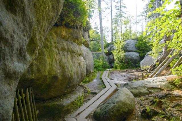 Zdjęcia: , , Błędne Skały w Górach Stołowych/Adobe Stock, POLSKA