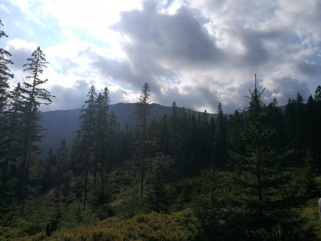 Zdjęcia: Babia Góra, Beskidy, Z bliska Babia Góra wygląda łagodnie, POLSKA