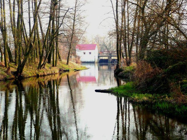 Zdjęcia: ok.Skierniewic, Mazowsze, rzeka, POLSKA