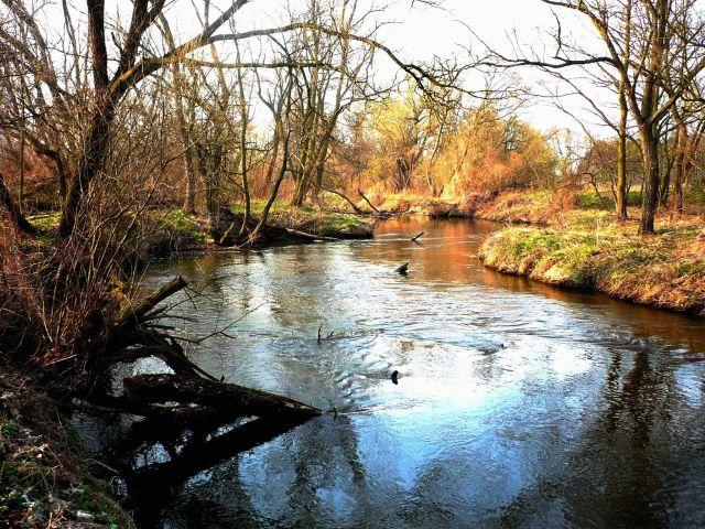 Zdjęcia: ok.Skierniewic, Mazowsze, rzeka1, POLSKA