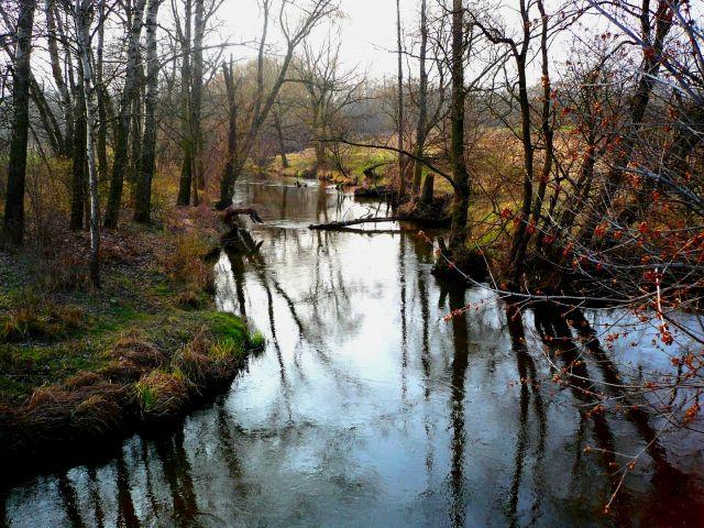Zdjęcia: ok.Skierniewic, Mazowsze, rzeka 3, POLSKA