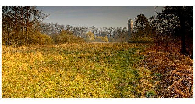 Zdjęcia: wieża, woj.Opolskie, ranną porą, POLSKA