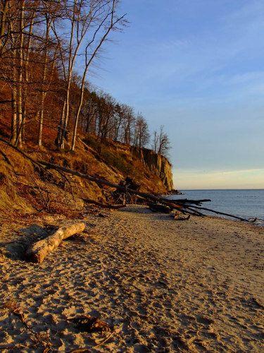 Zdj�cia: Gdynia Pla�a Or�owo, Pomorze, Klif Or�owo, POLSKA