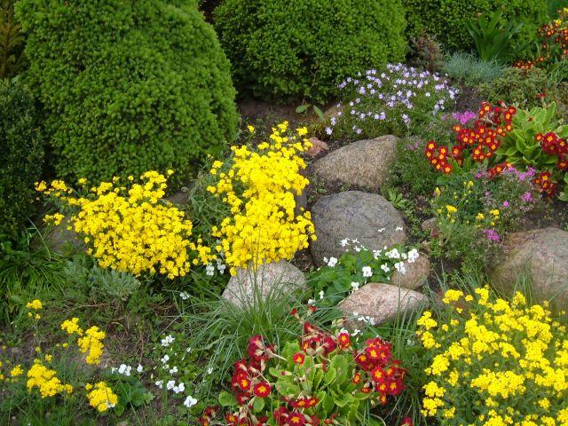 Zdjęcia: 30 km od centrum stolicy, mazowsze, w ogródku jednak więcej kolorów...., POLSKA