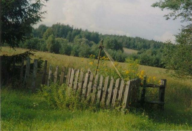 Zdjęcia: Puszcza Knyszyńska, Podlasie, Kapliczka na łące, POLSKA