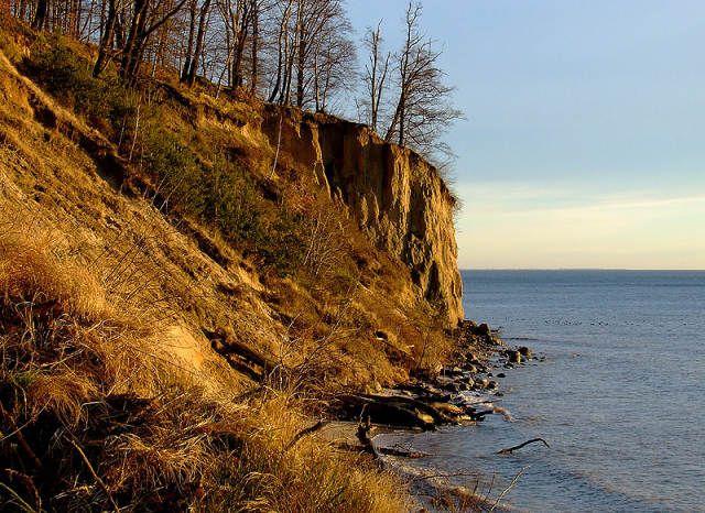 Zdjęcia: Gdynia Orłowo, Pomorze, Klif jesienną porą, POLSKA