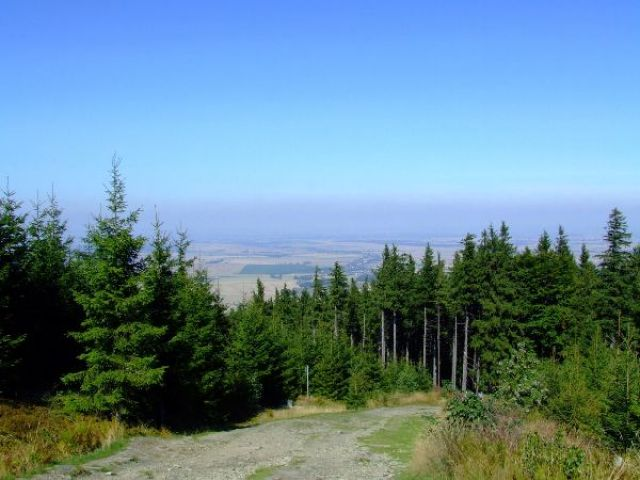Zdjęcia: Pokrzywna, Góry Opawskie, Piesze Wędrówki, POLSKA