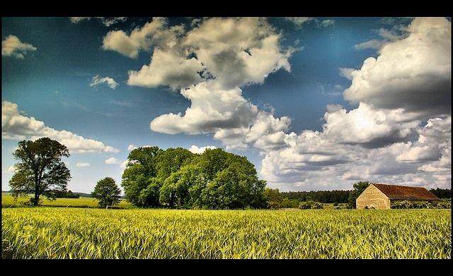Zdj�cia: pola,lasy,woda,wie�, woj.Opolskie, wyprawy rowerowe, POLSKA