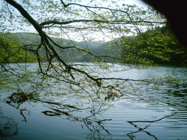 Zdjęcia: Zagórze Śląskie, Dolny Śląsk, Jezioro Bystrzyckie, POLSKA