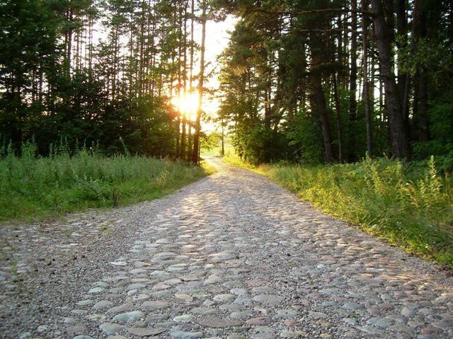 Zdjęcia: Rudawka, gmina Płaska, w stronę słońca, POLSKA