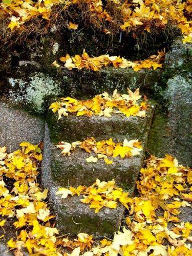 Zdj�cia: Chojnik, Dolny �l�sk, schody, POLSKA
