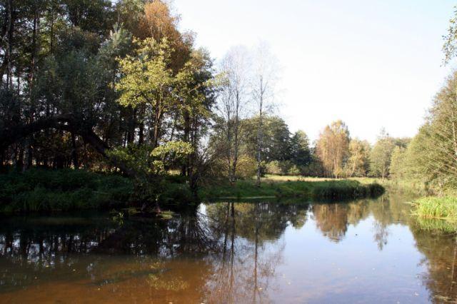 Zdj�cia: ko�o Wielbarku, w drodze na mazury, jesien, POLSKA