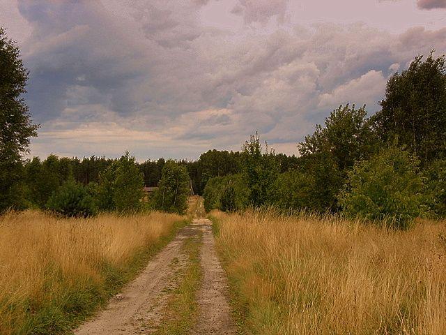 Zdjęcia: polska wieś, woj.łódzkie, Drogi i dróżki, POLSKA