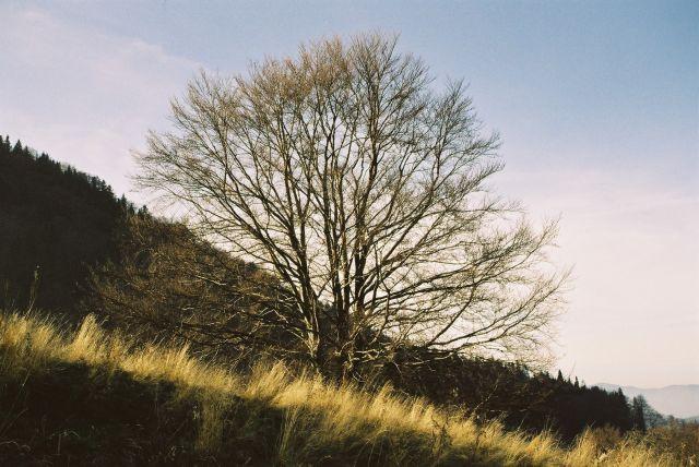 Zdjęcia: nad Jaworkami, Małe Pieniny, jesień w górach, POLSKA