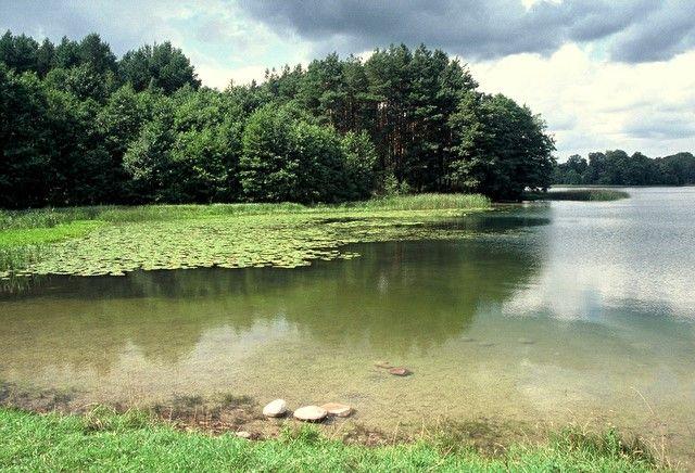 Zdjęcia: jez. Szurpiły, Suwalszczyzna, Jezioro porosłe legendami, POLSKA