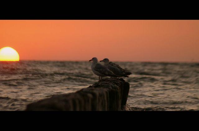 Zdj�cia: Jaros�awiec, wybrze�e, morskie impresje, POLSKA
