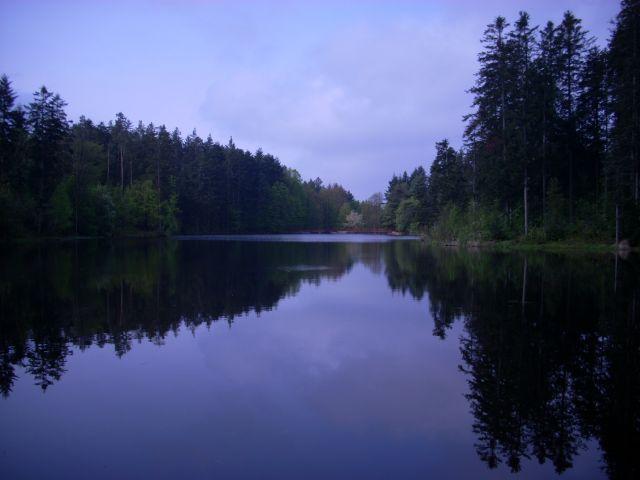 Zdjęcia: Roztocze., Nad jeziorem, POLSKA