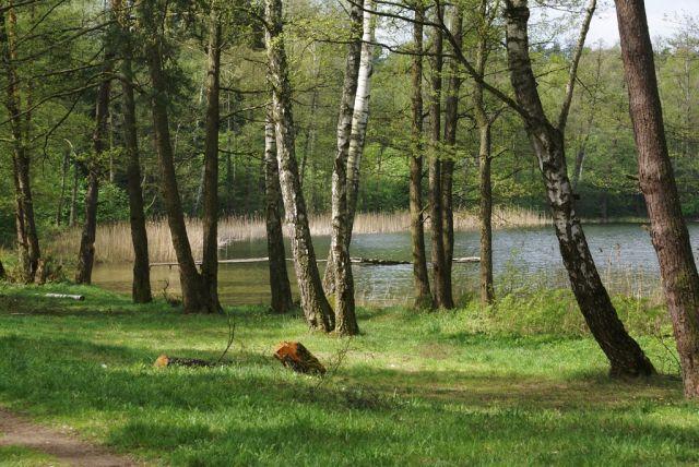 Zdjęcia: Jez. Borowe, Mazury, Wiosna nad Borowym, POLSKA