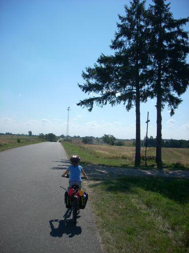Zdjęcia: Kosów Lacki, Nadburzanski Park Krajobrazowy, Adula na szosie., POLSKA