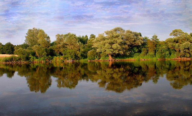 Zdjęcia: Mieżwice nad Bugiem, Podlasie, Podlasie 7, POLSKA