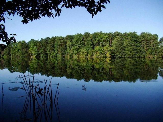 Zdjęcia: okolice Bydgoszczy, kujawsko -pomorski, poranek na rybach , POLSKA