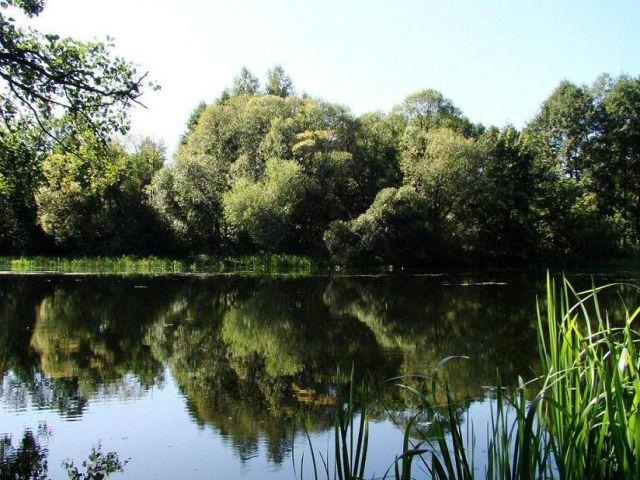 Zdjęcia: okolice Bydgoszczy, kujawsko-pomorski, chwile spokoju, POLSKA