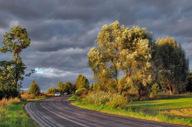 Zdjęcia: Droga do Krześlina, Podlasie, Podlasie 11, POLSKA