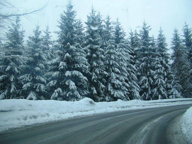 Zdjęcia: Istebna, Śląsk, Zima w Beskidach, POLSKA
