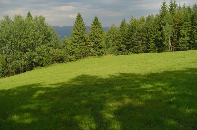 Zdjęcia: Zejście z Łabowskiej, Beskidy, Górska Łączka, POLSKA