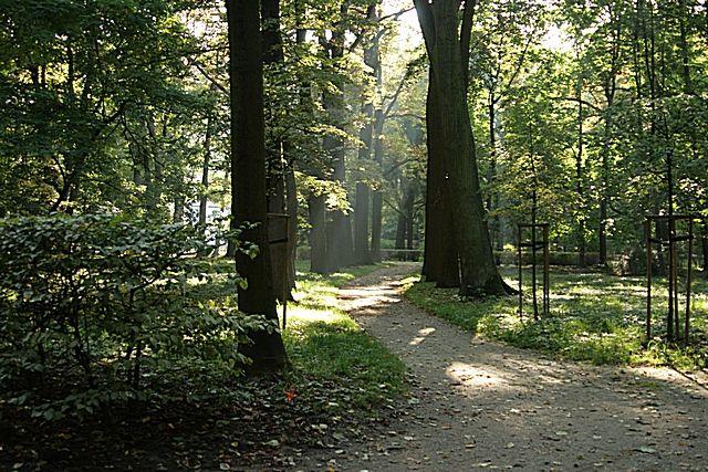 Zdjęcia: Warszawa - Łazienki Królewskie, Mazowsze, Jesiennie, POLSKA
