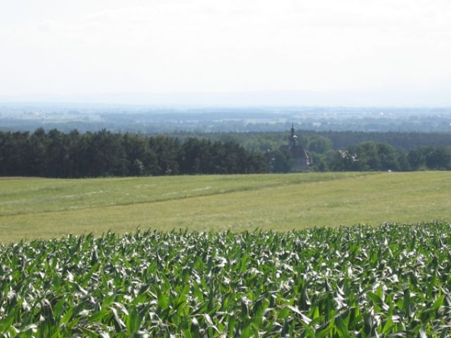 Zdjęcia: Krapkowice i okolice, ślask Opolski, lato i rower, POLSKA