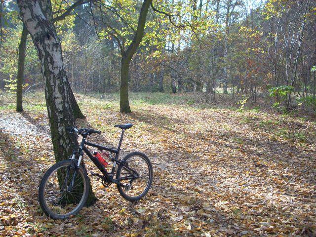 Zdjęcia: Mazowiecki Park Krajobrazowy, Mazowsze, Wekendowa wycieczka , POLSKA