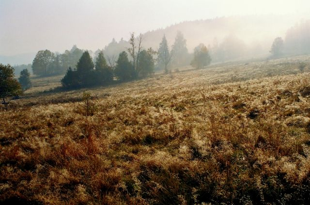 Zdjęcia: Stary Gierałtów, Góry Bialskie, w drogę o poranku..., POLSKA