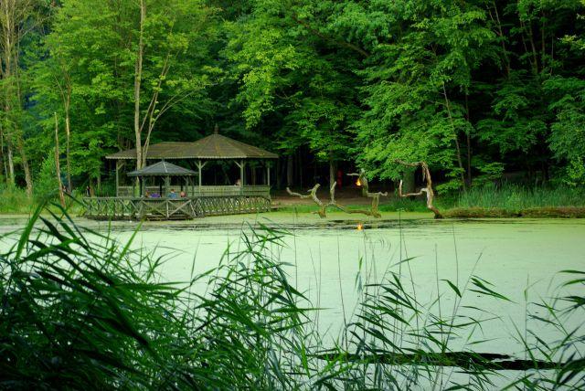 Zdjęcia: Giżycko, Mazury, Park, POLSKA