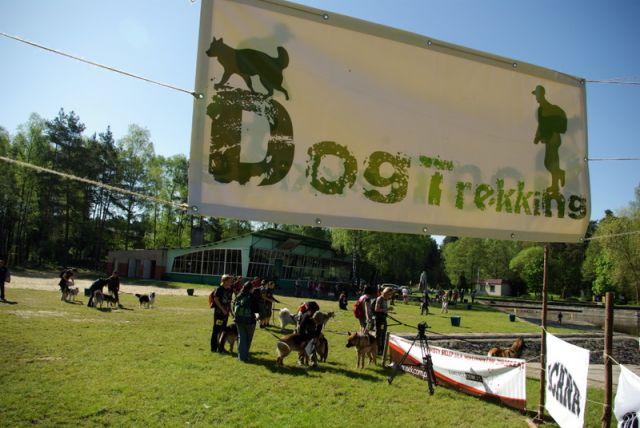 Zdjęcia: Koszęcin, Dogtrekking, POLSKA