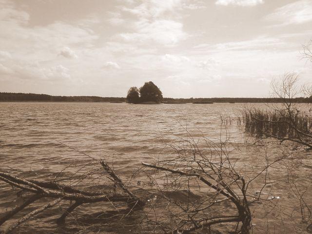 Zdjęcia: Lubliniec, Staw, POLSKA