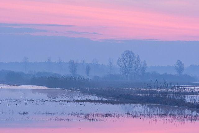 Zdjęcia: Biebrza, południowy basen, Wschód słońca nad Biebrzą, POLSKA