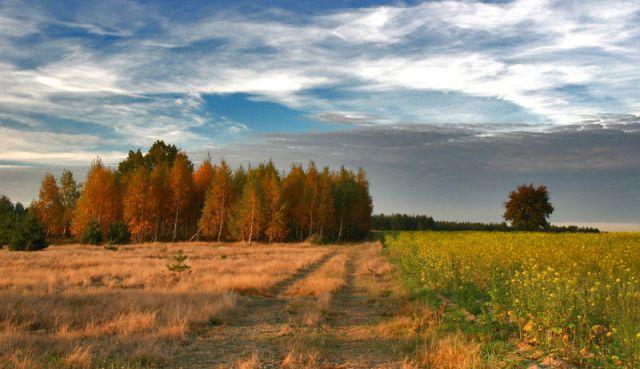Zdjęcia: Żelków k.Siedlec, Jesien na Podlasiu, POLSKA
