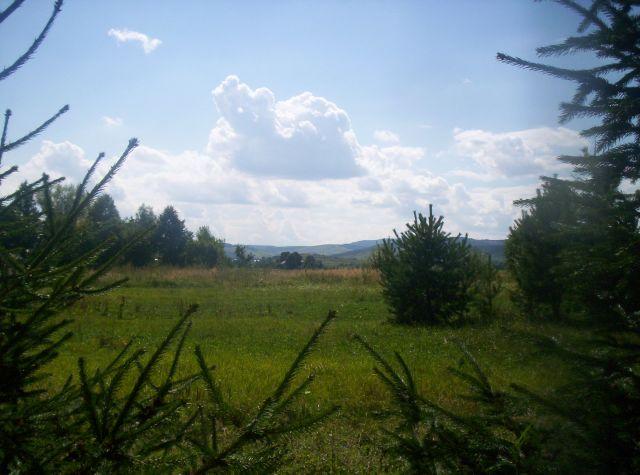 Zdjęcia: Gorzyce, Bieszczady, Bieszczady, POLSKA